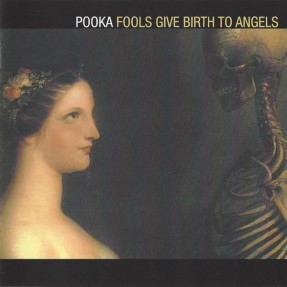Fools Give Birth To Angels