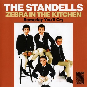 Zebra In The Kitchen / Someday You'll Cry